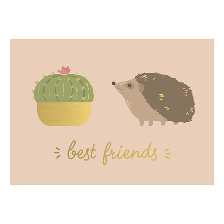 Best Friends Hedgehog Postcard